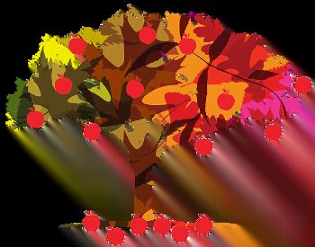 Ілюстрація фонду, яблуня